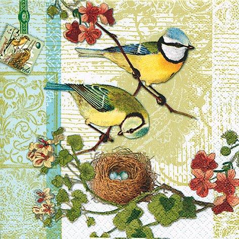 20 Servietten Bird Family – Blaumeise / Frühling 33x33cm