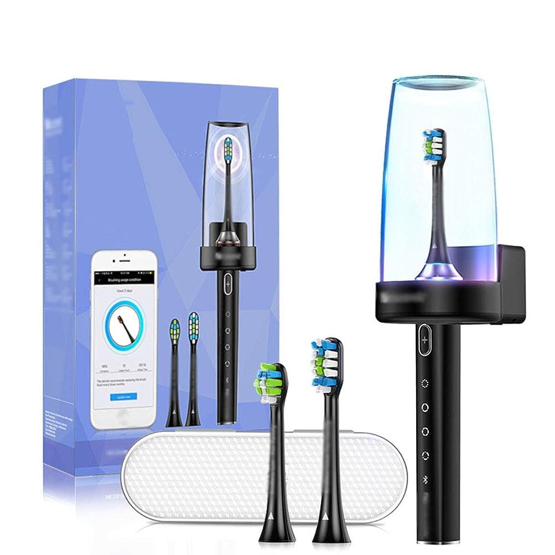 ローマ人時制状況ソニック電動歯ブラシUSB充電式歯ブラシ、2個のデュポン交換時間ブラシヘッド付き,黒