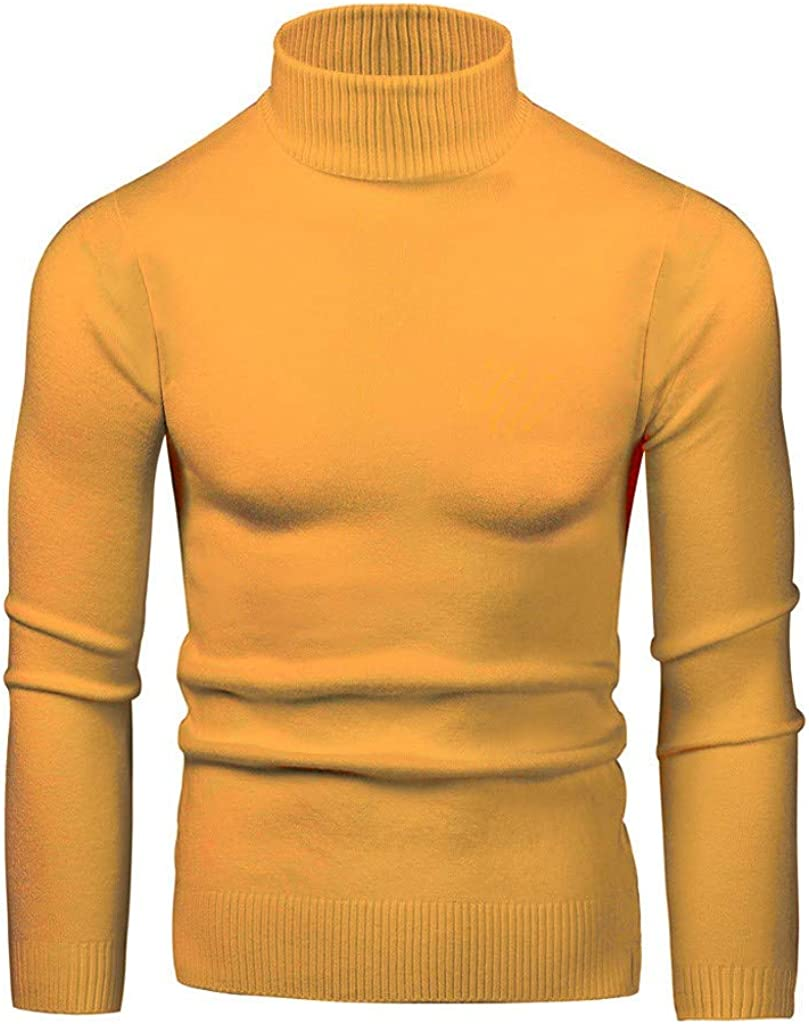 Men's Knitted Sweater Slim Fit Solid Warm Soft Turtleneck Top Pullover