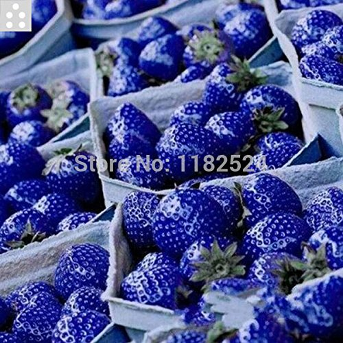 2014 Vente Graines Légumes 100% d'origine Seeds Top qualité douce 100pcs SEMENTES - Bonsai fruits des plantes Légumes
