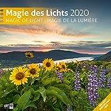 Magie des Lichts 2020, Wandkalender / Broschürenkalender im Hochformat (aufgeklappt 30x60 cm) - Geschenk-Kalender mit Monatskalendarium zum Eintragen