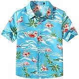 SSLR Big Boy's Flamingos Button Down Short Sleeve Aloha Hawaiian Shirt (Medium (10-12), Blue)