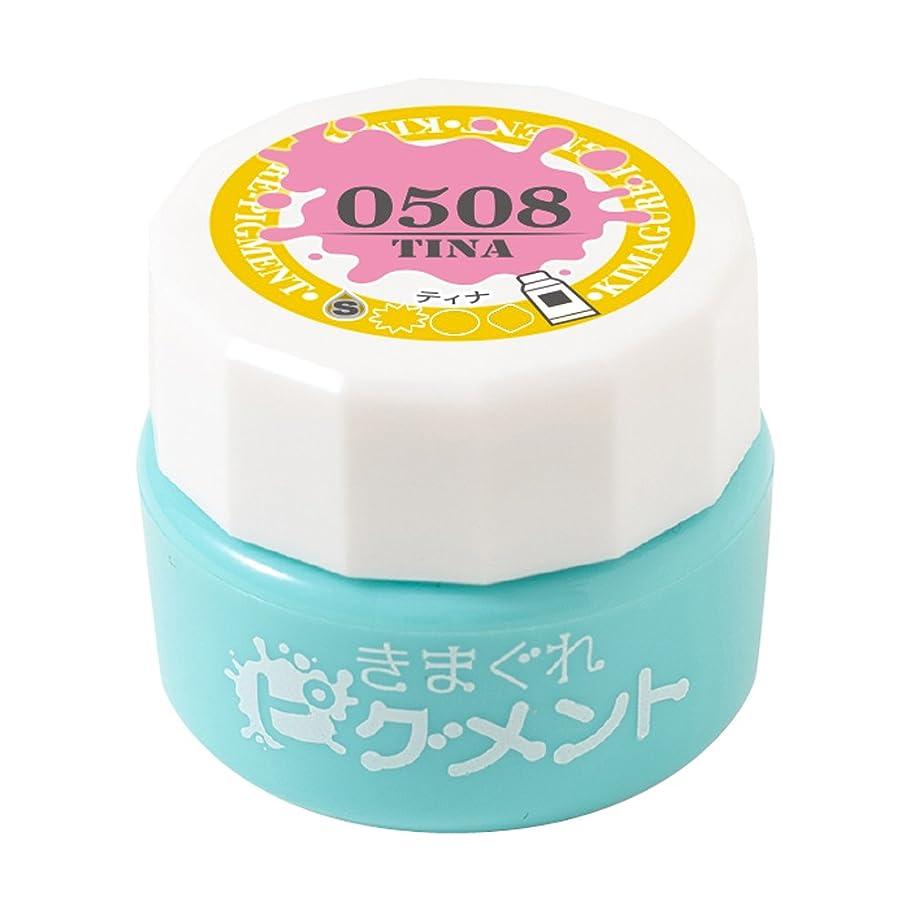 ミュート懺悔適応的Bettygel きまぐれピグメント ティナ QYJ-0508 4g UV/LED対応 シアー