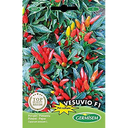 Germisem Vesuvio F1 Semi di Peperoncino 0.5 g