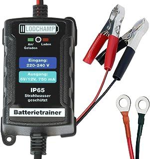 LODCHAMP 146303 Batterietrainer 6V/12V 750mAh IP65 Erhaltungsladegerät Batterieladegerät Erhaltungsgerät für KFZ Auto Motorrard Quad ATV Boot, Silber