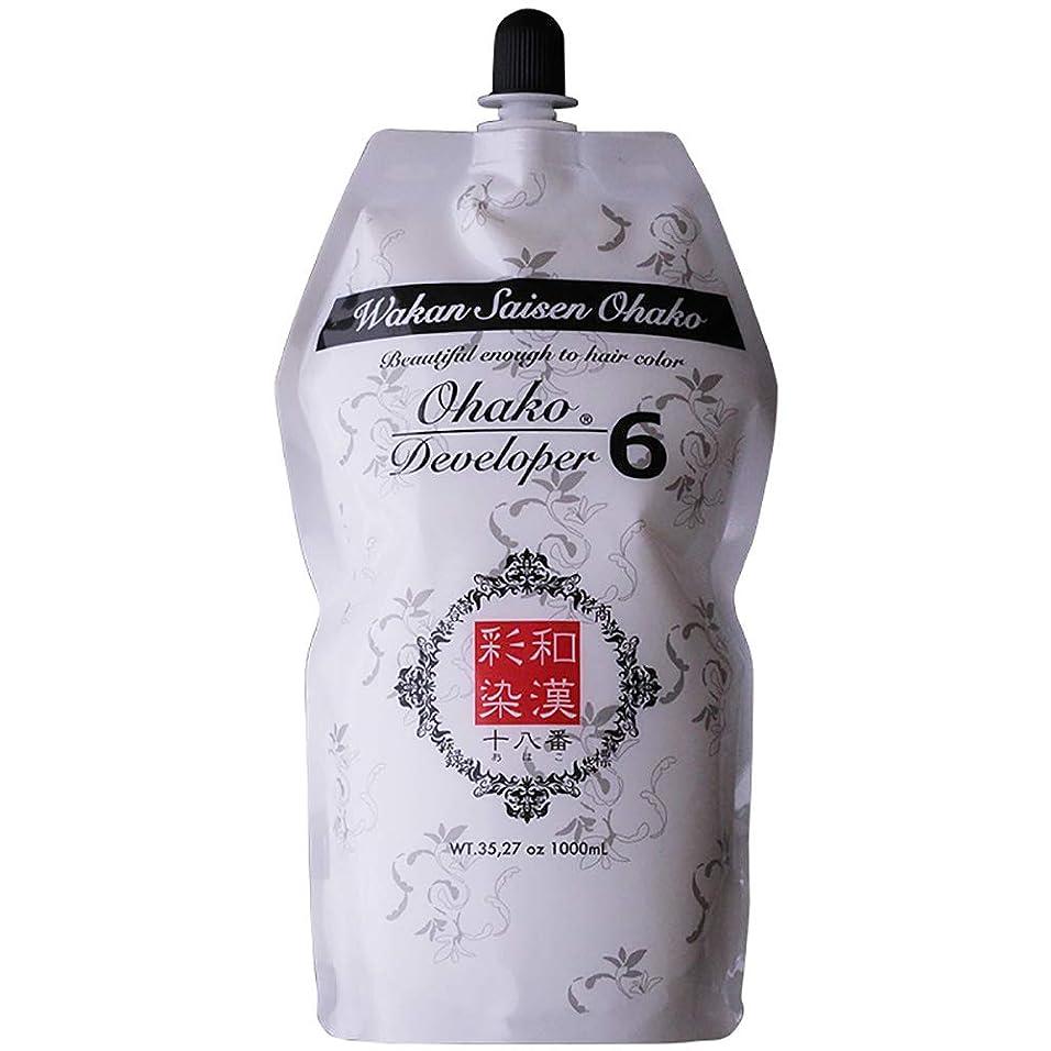 息苦しい描く花に水をやる日本グランデックス 和漢彩染 十八番 デベロッパー 1000g(業務用) 全2種 6%