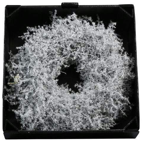 Wundervoller Asparagus Kranz Gewachst - Natur Türkranz Weihnachten - Deko Wandkranz/Weihnachtskranz/Gewachster Hängekranz/Tischkranz/Asparaguskranz (Weiß, Ø 35cm (1 Stück))