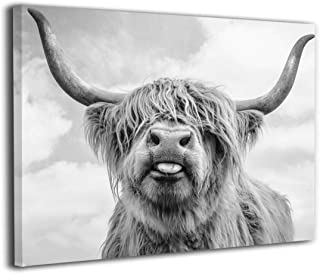 Canvas Print Wall Art Black and White Freedom Highland Cow Pictures Painting for Living..