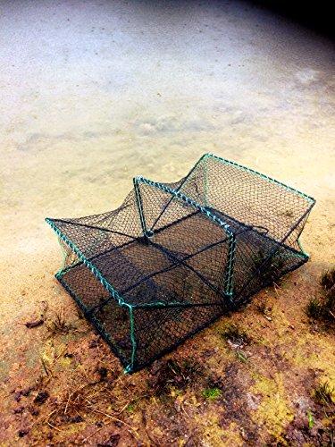 Machermann Nr. 30A Plattfischkorb 60cm x 43cm x 22cm, Köderfischreuse,Krebsreuse, Krebskorb, Krabbenreuse, Krabbenkorb, Reusen