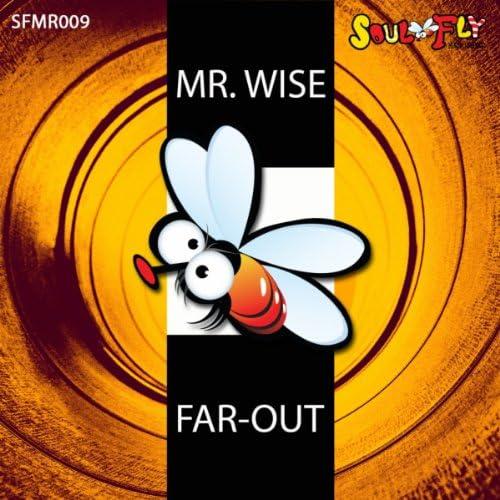 Mr. Wise