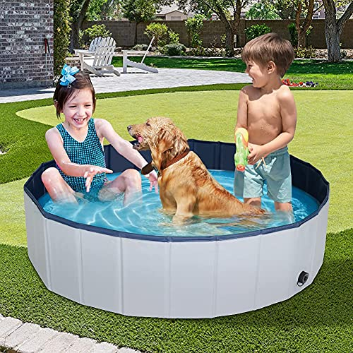 Petbobi Foldable Dog Pool, Collapsible Hard Plastic Dog Bathtub Pool, Portable Indoor and Outdoor Swimming Pool for Kids, Medium Large Dogs and Cats, 48 x 12 in, Blue
