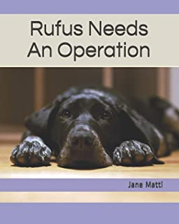 Rufus Needs An Operation (Our Rescue Dogs)
