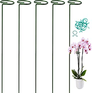HiGift 5 Pack Garden Support and Stakes for Single Stem Plant Flower with 2.5
