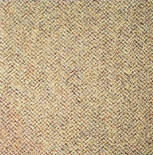 Shaw Beige Carpet Tile-24