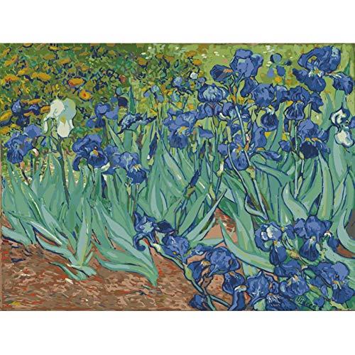 AGjDF Van Gogh Iris arbeitet Blumen5D DIY Ölgemälde Kinder Erwachsene_Vorgedruckt Leinwand_Leinwand Ölgemälde für und Zeichnung Anfänger mit Pinsel ohne Rahmen_40x50cm