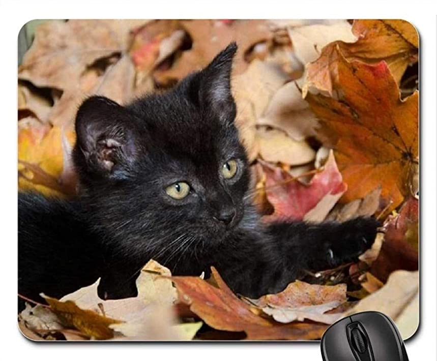 (Cats Mouse Pad),Autumn Kitty Mouse Pad, Mousepad