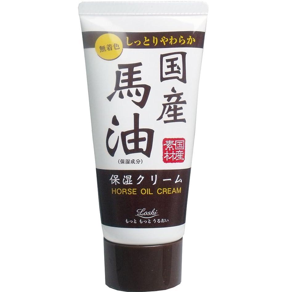押す食品受粉者ロッシ モイストエイド ハンドクリーム 国産馬油 45g ×2セット