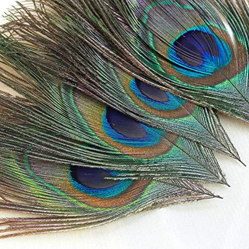 Winomo 100 Stück 25-30 cm, schöne natürliche Federn, Pfauenfedern, Augen, Handwerk, Dekoration / Kunst / Kleid / Hüte / Hochzeit / Party Kostüm