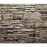 murando - Fototapete Steinoptik 400x280 cm - Vlies Tapete - Moderne Wanddeko - Design Tapete - Wandtapete - Wand Dekoration - Steintapete Steine Stein Mauer Steinoptik 3D f-B-0136-a-a