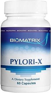 Pylori-X Mastic Gum - Eliminates Helicobacter Pylori (H. Pylori) & Protects Stomach Lining, Restores Mucosal Lining, Contains Berberine, Bismuth Salts (60 Capsules)