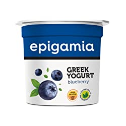 Epigamia Blueberry Greek Yogurt, 90g