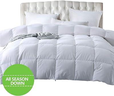 Fraylon Twin Size Down Comforter All-Season Luxurious Comforter 1800TC 100% Egyptian Cotton Shell Lightweight White Fluffy Duvet Insert 750+ Fill Power, 30oz with Corner Tabs