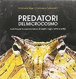Predatori del microcosmo. La lotta per la sopravvivenza di insetti, ragni, rettili e anfibi. Ediz. illustrata