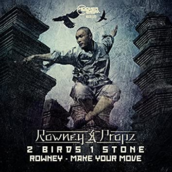 2 Birds 1 Stone / Make Your Move