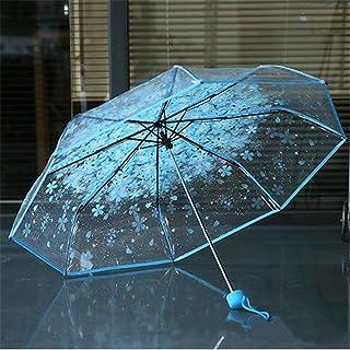 Mode Transparent Ombre Frilly Show Charme Tempérament Marche À L'extérieur pour Les Dames Attirer l'oeil du Parapluie 1 PCS