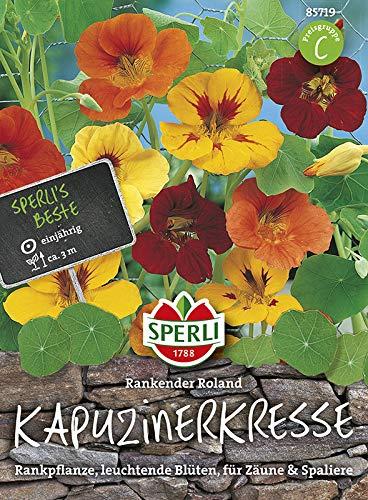 Sperli Blumensamen Kapuzinerkresse Rankender Roland, grün