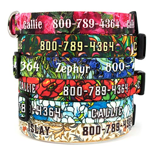 Buttonsmith Art Dog Collar - Fadeproof Permanently Bonded Printing, Military Grade Rustproof Buckle, Resistant to Odors & Mildew, Choice of 6 Sizes, - Made in The USA