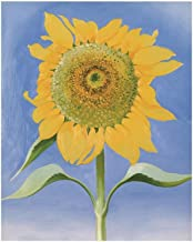Best georgia o keeffe posters Reviews