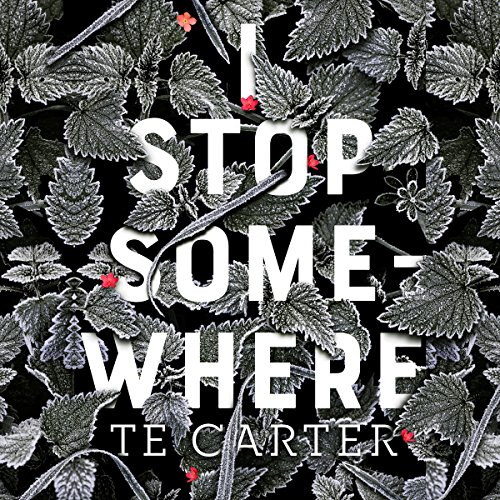 I Stop Somewhere audiobook cover art