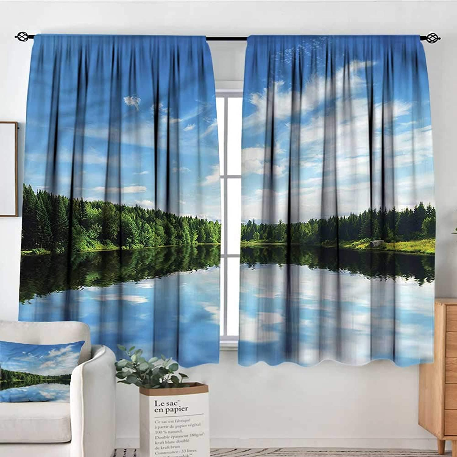 RenteriaDecor Forest,Rod Curtains Tranquil Lake with Clear Sky 42 X63  Backout Curtains for Kids Iving Room