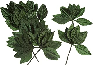 Victoria Lynn Single Green Leaves, 1 x 2.5 inches, 144 Pieces