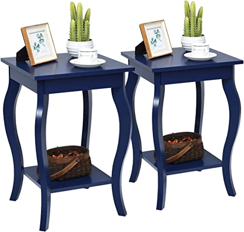 """Giantex End Table 16"""" W/Storage & Shelf Curved Legs Home Furniture for Living Room Accent Sofa Side Table Nightstand ..."""