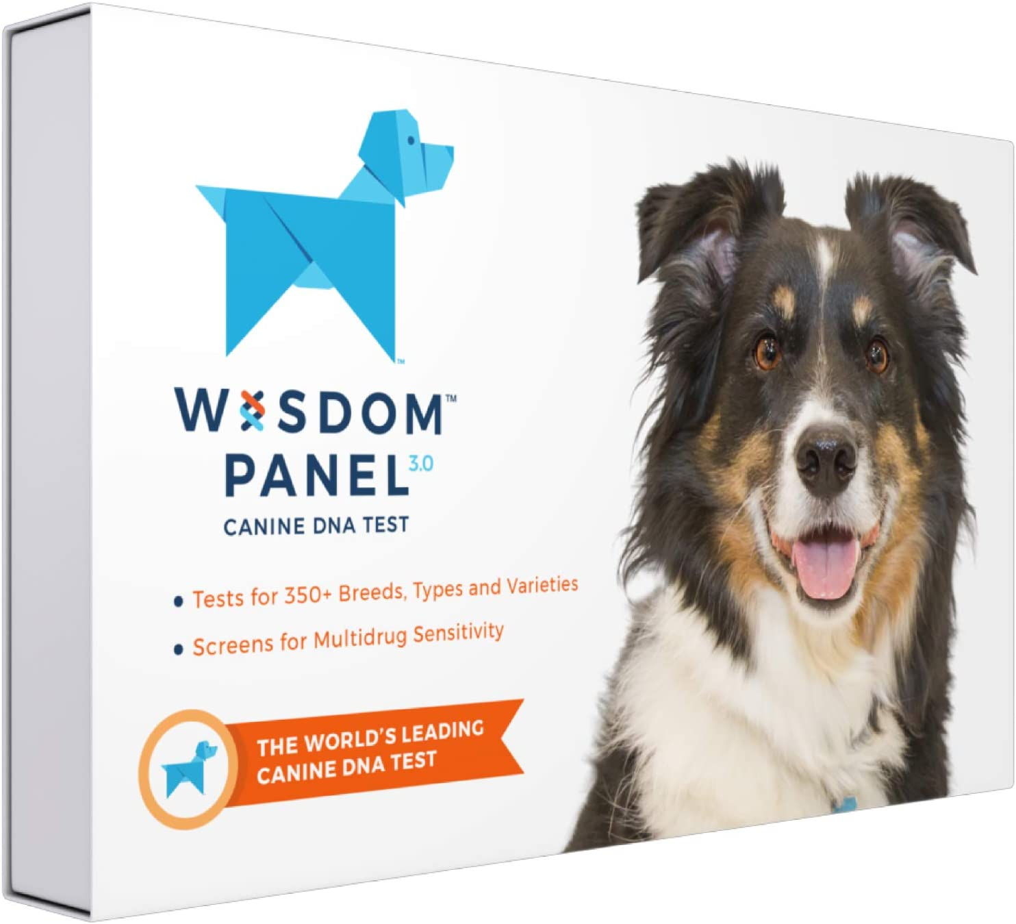 Wisdom Panel 3.0 Max 84% OFF Canine DNA Test Kit - an Dog Breed Wholesale for