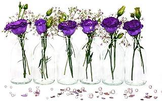 casavetro Lot de 24 Mini vases en Verre en Forme de Bouteille pour décoration de Mariage