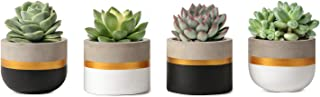 Mkono 3 Inch Mini Cement Succulent Planter Modern Concrete Cactus Plant Pots Small Clay Indoor Herb Window Box Container for Home and Office Decor, Set of 4 (Plant NOT Included)