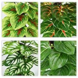 Immagine 1 soguyi piante artificiali 24 cm
