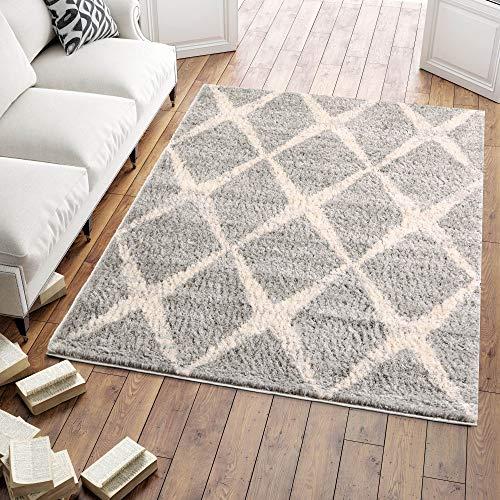 Carpeto Shaggy Hochflor Teppich Bettvorleger - für Wohnzimmer, Schlafzimmer, Esszimmer - Grau III - Skandinavisch - Weicher Modern Teppiche - 120 x 170 cm