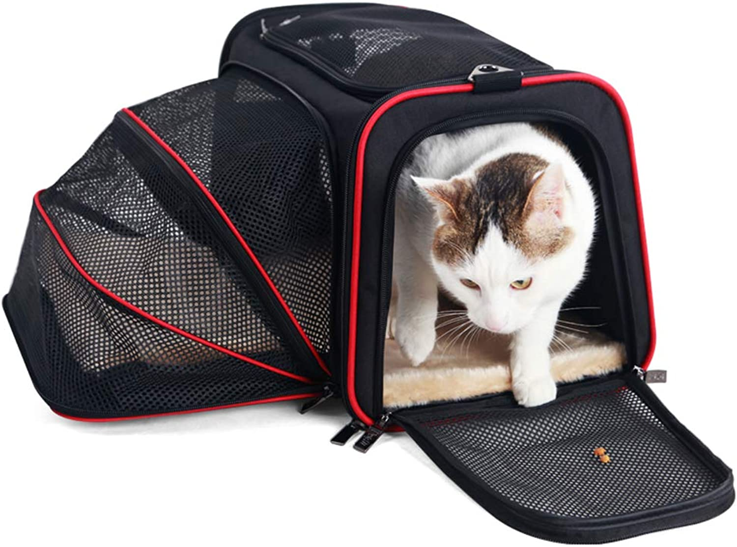 Pet Travel Crate Foldable Portable Dog Kennel Small Medium Dogs Cats Soft Sided Carriers Cats Dogs Travel Crate(Large),M