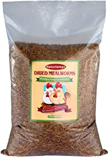 22 Lbs Dried Mealworms Hot Sales