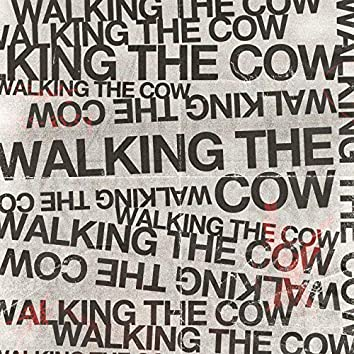 Walking the Cow
