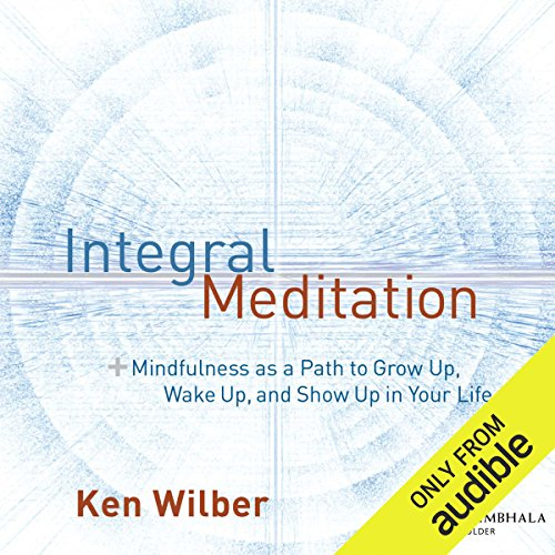 Integral Meditation audiobook cover art