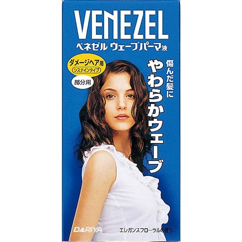 北契約冷酷なベネゼル ウェーブパーマ液 ダメージヘア用 部分用【HTRC5.1】