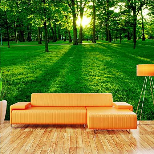 3D muurschildering op maat 3D foto behang muurschildering groen bos zonlicht woonkamer bank tv achtergrond niet-geweven muurschildering behang modern 400x280cm