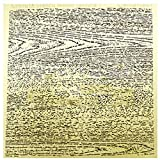Sankuai Fiche de Gravure de Grain de Bois de Grain de Bois de 1pc rétro à l'aérographe de l'aérographe de la Texture du Bois pour 1/32 1/35 1/48 modèle de Fabrication de Bricolage (Couleur : Fine)