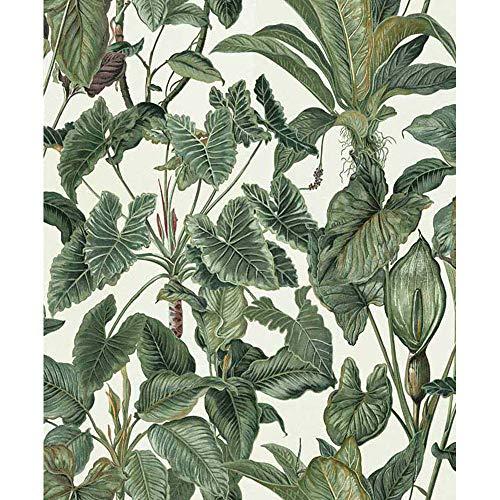 """Erismann 6303-17,8cm""""paradiso raccolta carta da parati in tessuto non tessuto, multicolore, 10.05x 0.53m"""