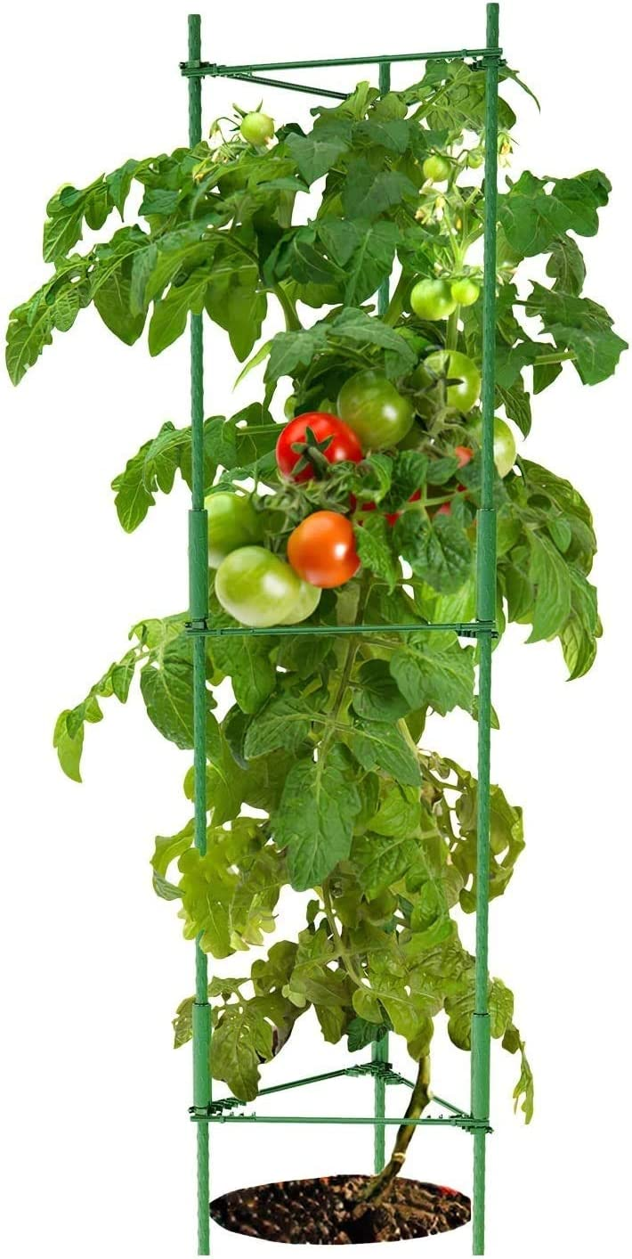 K-Brands Tomato Large-scale sale Cage – Plant and Stakes Support Max 65% OFF Clips with